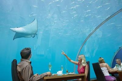 Undersea Restaurant 4
