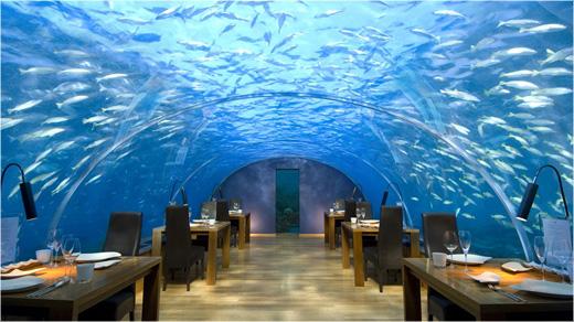 Undersea Restaurant 3